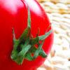 アンチエイジングに最適!食べる美容液とも名高いトマトの美容栄養素に迫る