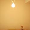無印良品の無垢材家具とIDEEのシーリングランプを組み合わせたら…